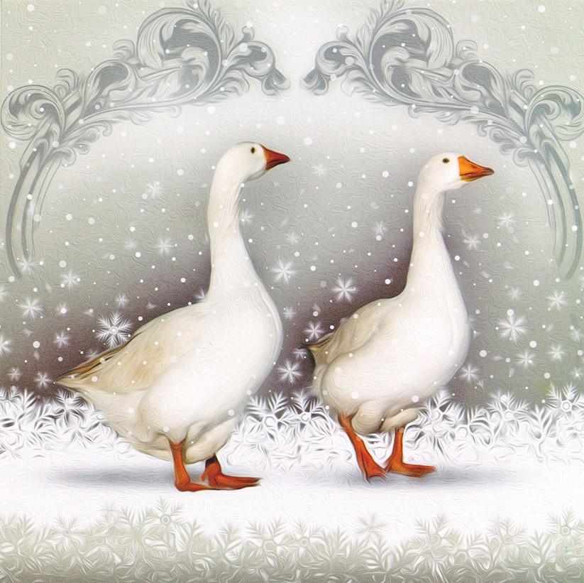 Christmas Card Geese
